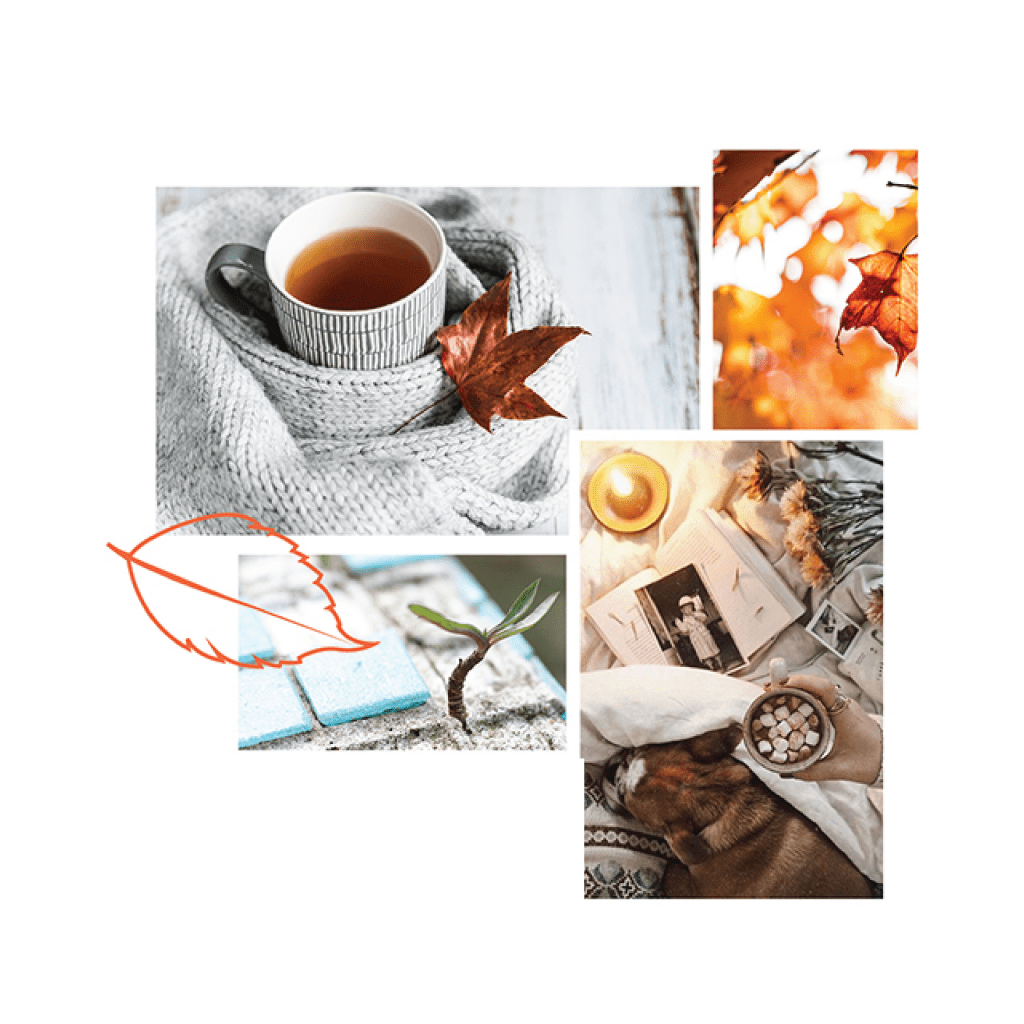 Moodboard Design for Counselling brand project