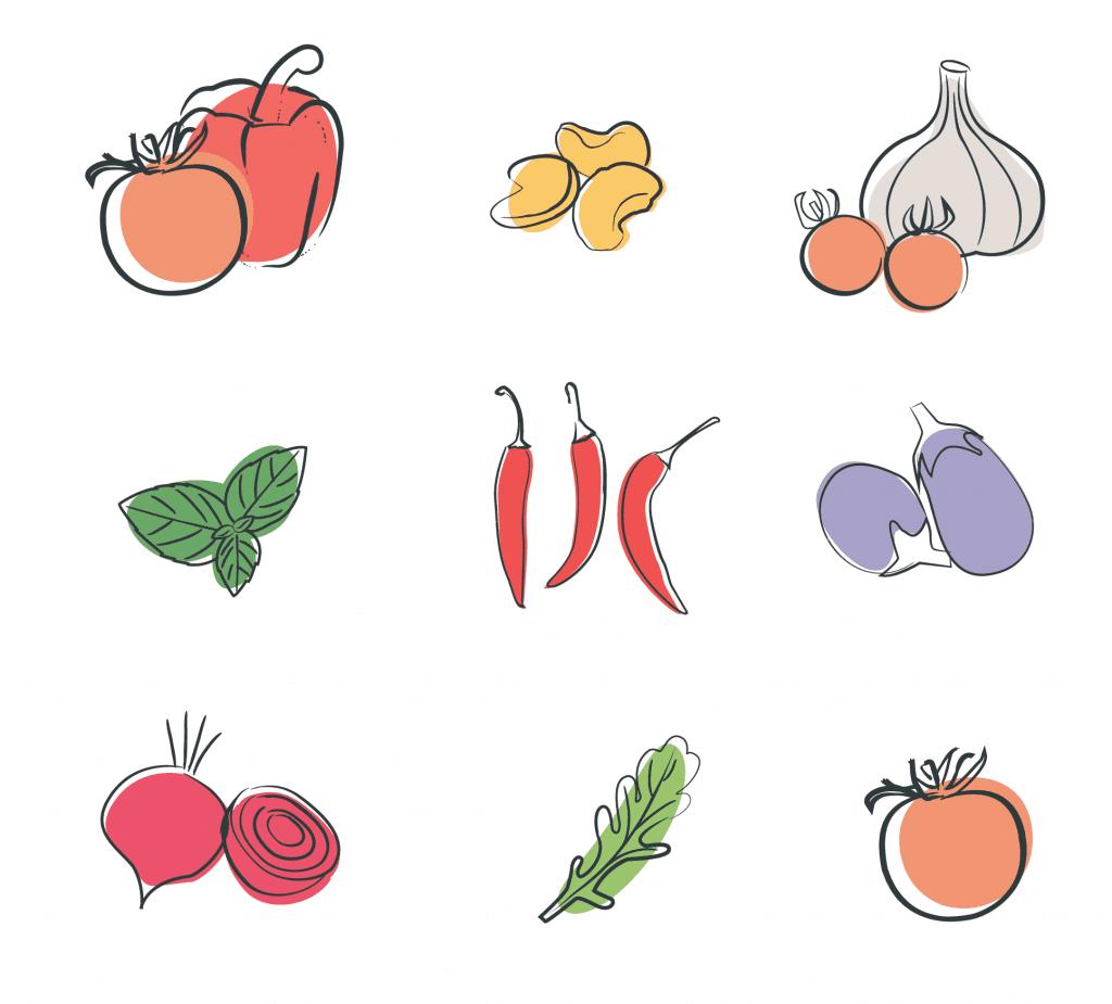 vegetable branding illustrations by Springfield illustrator Kat Potter