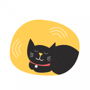 black cat sleeping and puring digital illustration